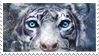 Tigers Curse STAMP by Vyntresser