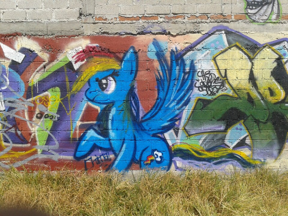 Rd graffiti by Pietas
