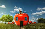 House Tomato
