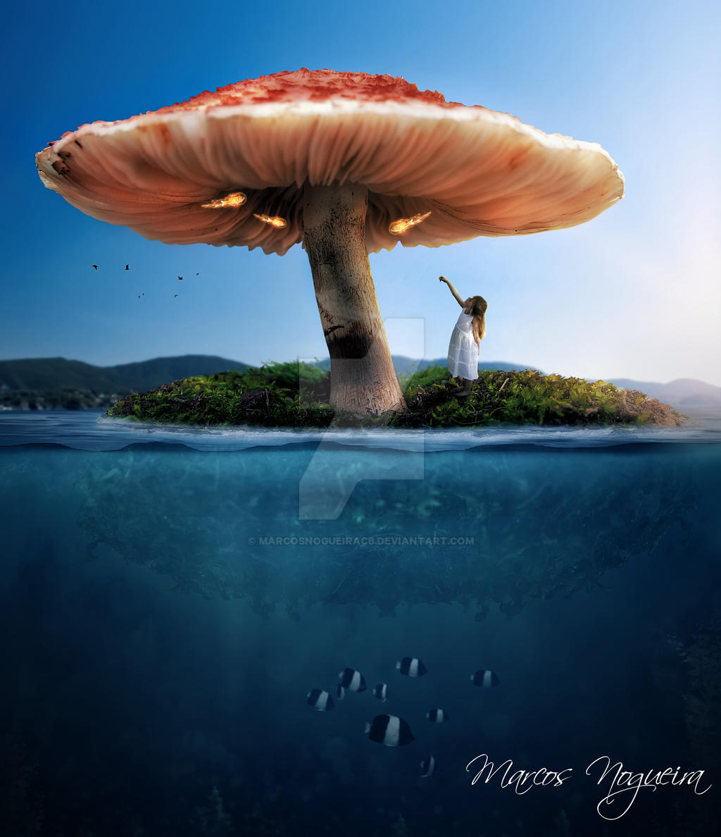 Mushroom fantasy by marcosnogueiracb