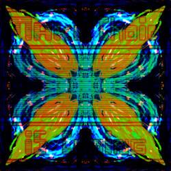 Starry Clover Flower