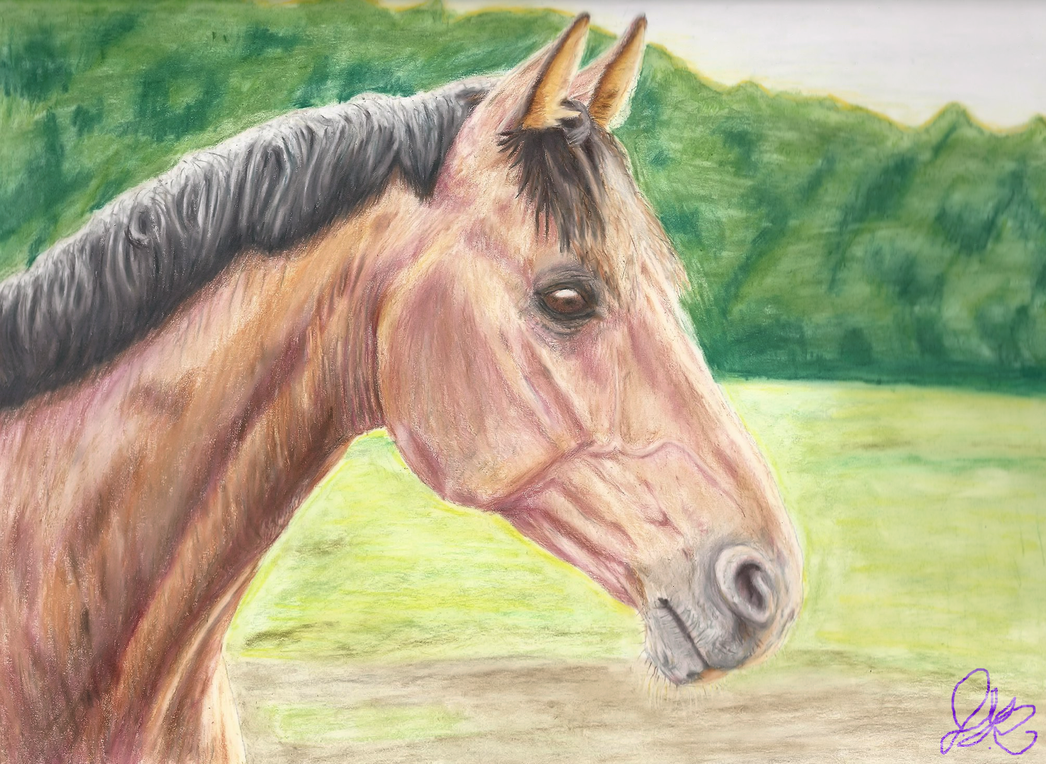 Horse Head Colored Pencil Final Signed by KilynnTor