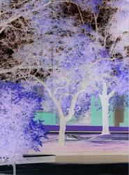 Negative Art Tree by JJJJust