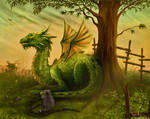 The Dragon And The Racoon