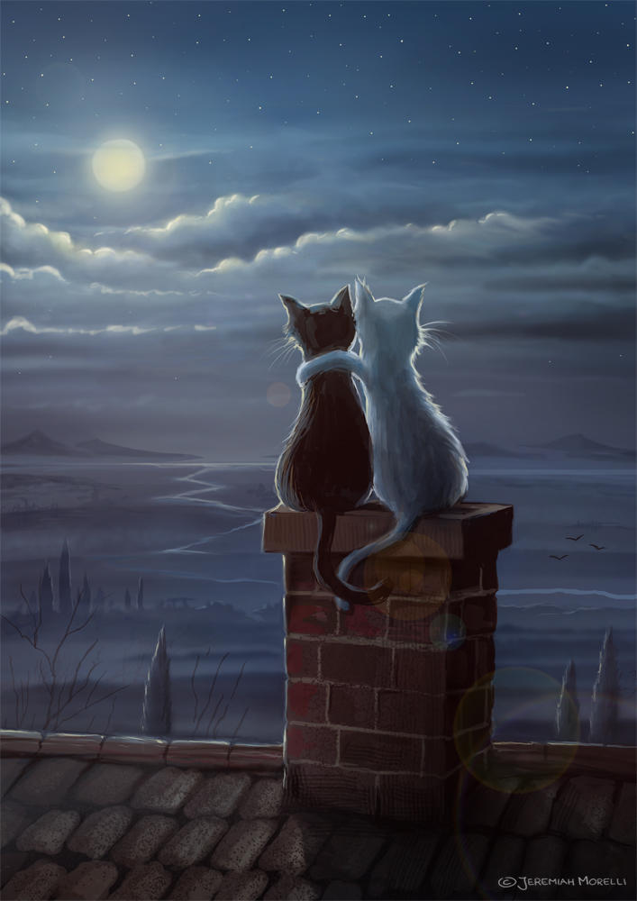 Just two cats on a roof by MorJer