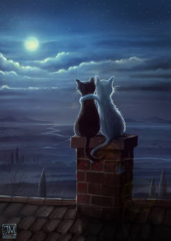 Just two cats on a roof