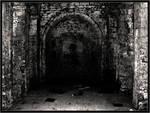 Disturbed Sanctuary
