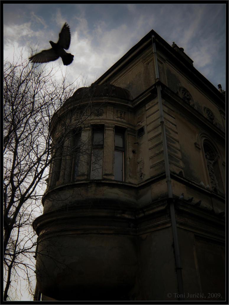 House of Black Squab by sedativegod