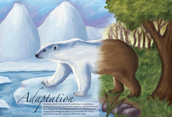 Adaptation - the polar bear by sweetmisery11 on DeviantArt