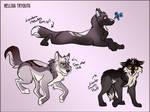 Helliss Pup Tryouts by WynBird