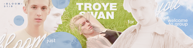 Troyesivan Banner by MaxNerkagy