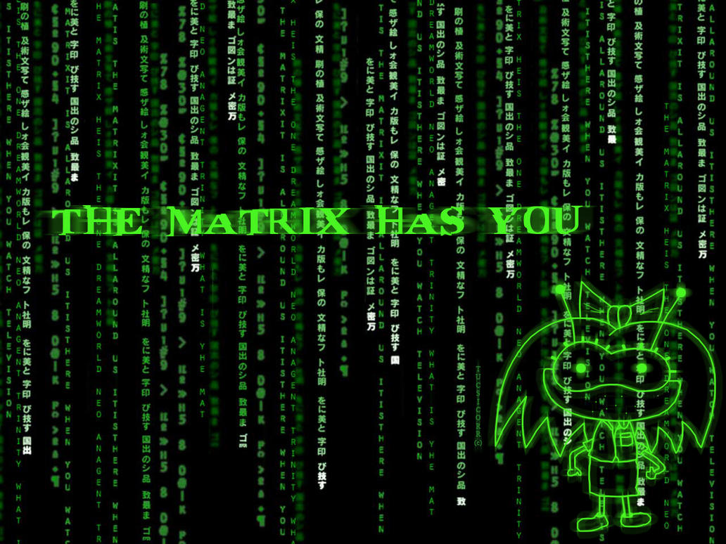 The MATRIX has you by tucsicorr