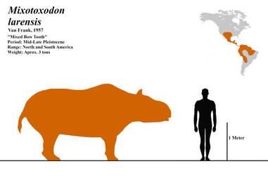 Mixotoxodon larensis by MadCarno