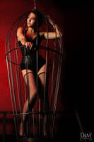 Caged by Lady-of-Slaughter