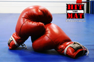 Red Boxing Gloves by boxingwrestling