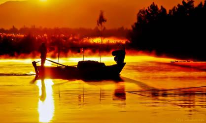 in the morning light by tolgag