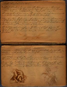 Darka: Hermit's journal