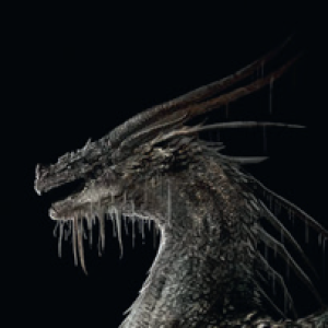 AnotherDungeonhero's Profile Picture