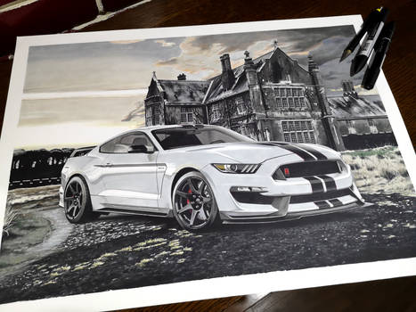 Ford Mustang Shelby GT350R Freddy