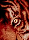 Eye 2 by API-Beast