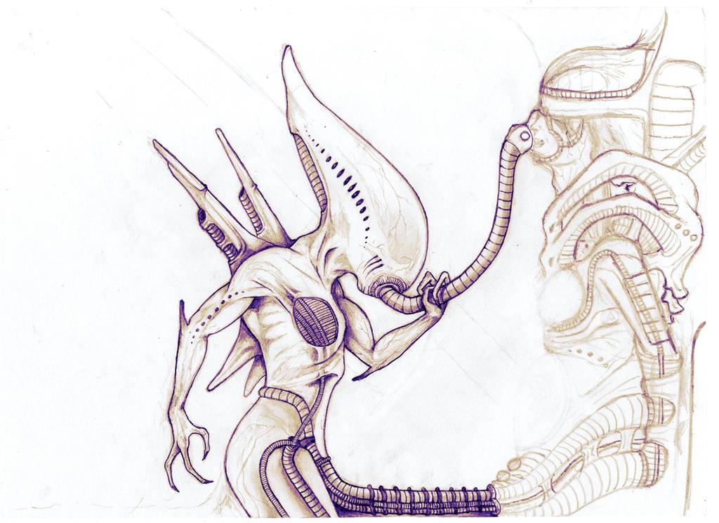 sketch (EDITED) by BiXoLoCoO616