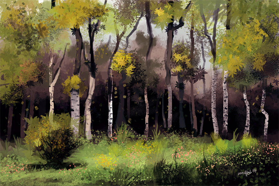 Birch forest by Medhi
