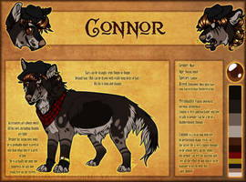 .: Connor Official Sheet Ref 2015 :. by SillyTheWolf