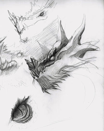 Dragon head sketches II by Alfvag
