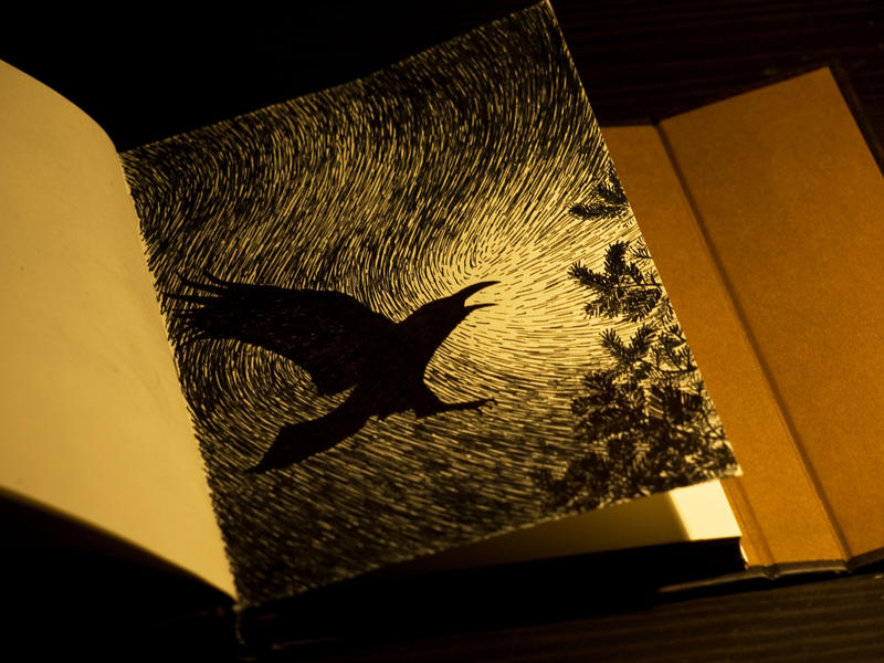 Raven ink sketch by Alfvag