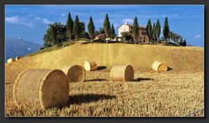 Tuscany Harvest by neanderdigital