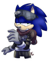 Woah Sonic by wolfiisaur