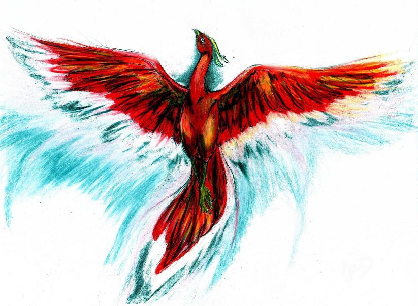Phoenix by Kodachiku