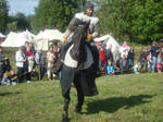 Horses and People 0074