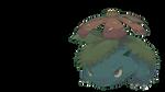 Fushigibana | Venusaur Commission