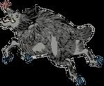 Clipart Wild boar