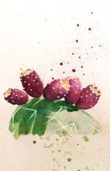Inktober #23 Prickly Pear