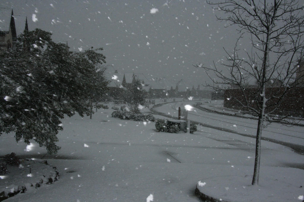 Snowy Neighborhood – Picturing God