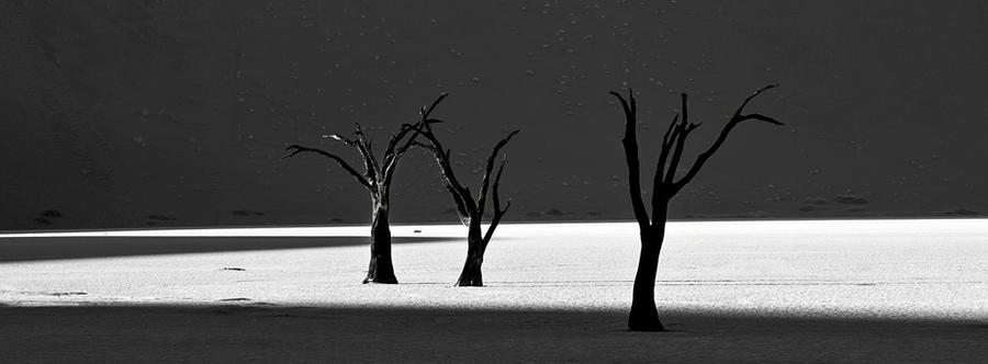 Black White Deadvlei by Arty-eyes