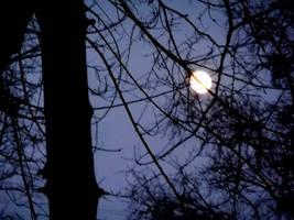 twilight by EmilyPrudent