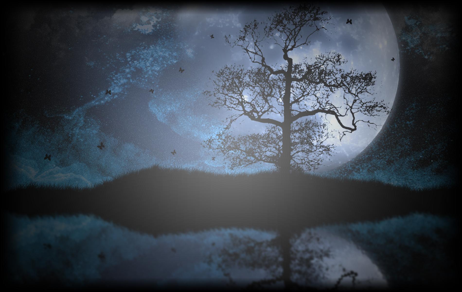 Papillons au Clair de Lune