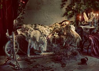 Sleeping Beaty dress by KasiaKonieczka