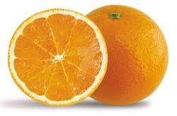 Orangezzzzzzzzzzzzzzzzzzz by katinasilver
