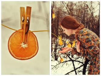 Solar by NataliaDrepina
