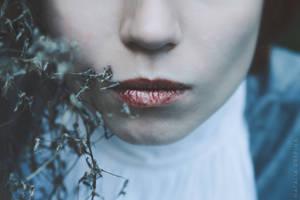 The Tense Silence by NataliaDrepina