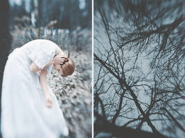 Arboles by NataliaDrepina