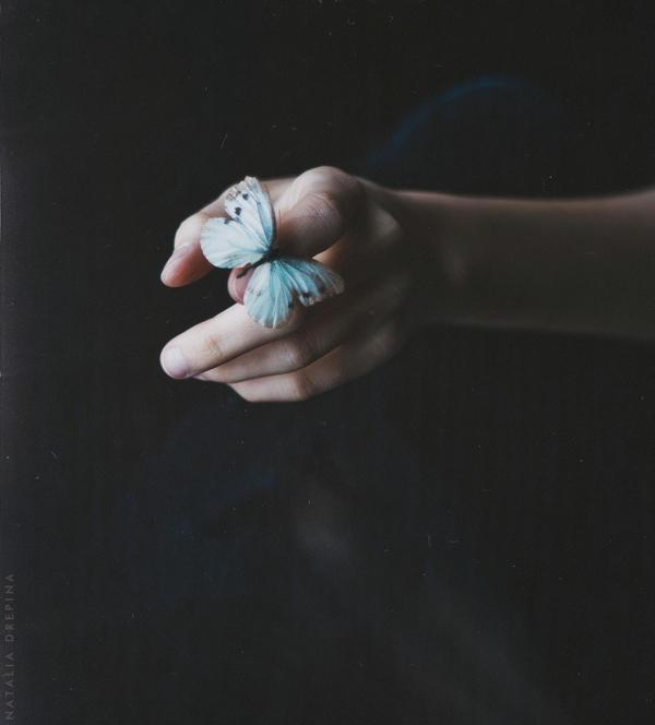 Ramshackle wings by NataliaDrepina