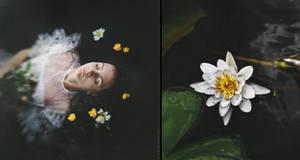 Diptych: Water Flower