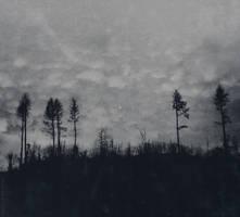 Sombreness by NataliaDrepina