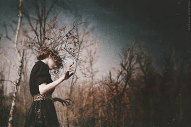 Sorrowful Tree's Soul by NataliaDrepina