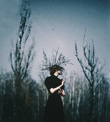 The deepening twilight by NataliaDrepina